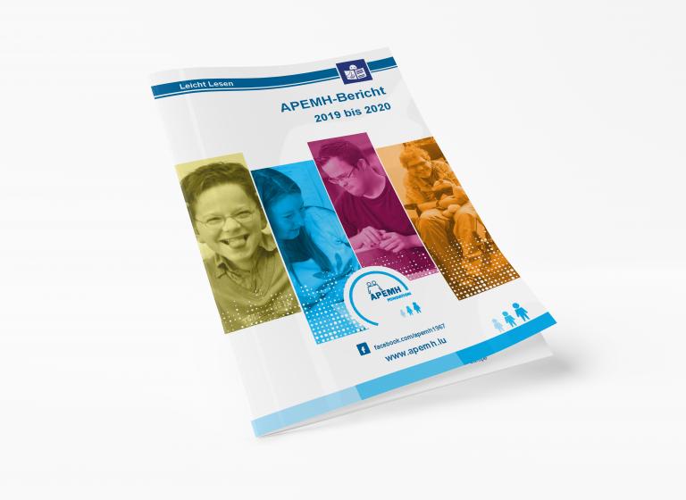 Rapport de l'APEMH 2019 à 2020